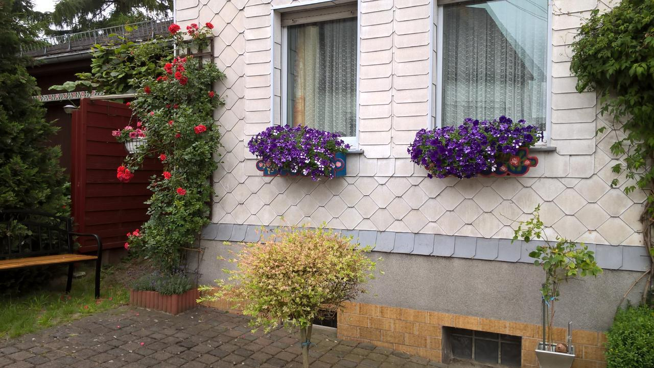 Ferienwohnung Ferienwohnung (276493), Spesenroth, Hunsrück, Rheinland-Pfalz, Deutschland, Bild 5