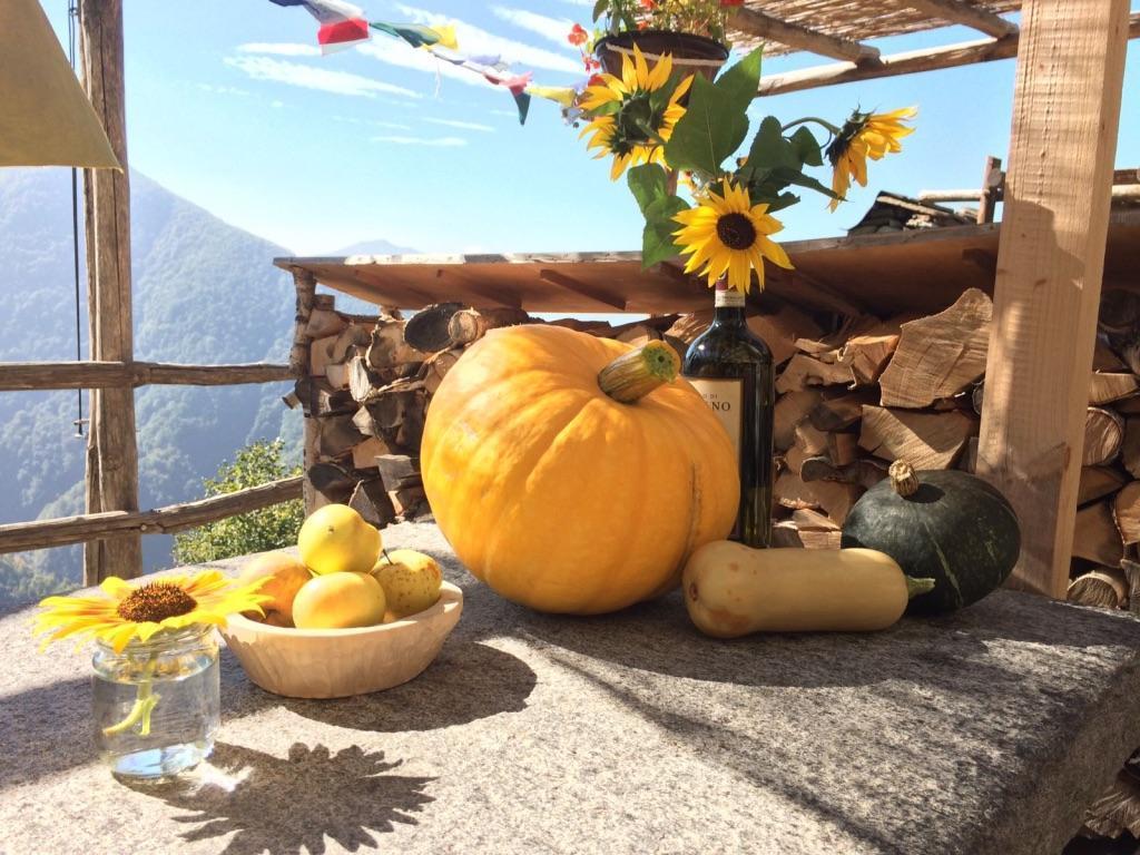 Holiday house Rustico Casa Sol (2789304), Vogorno, Verzasca Valley, Ticino, Switzerland, picture 7