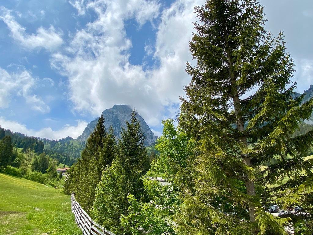 Ferienwohnung Brunni-Alpthal am Grossen Mythen (2797804), Alpthal, Schwyz, Zentralschweiz, Schweiz, Bild 14