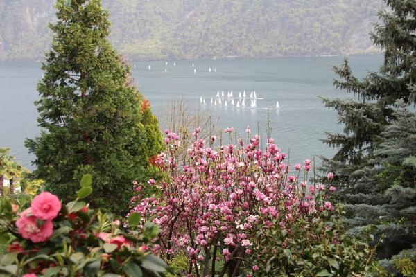 Ferienhaus Barony Luxus-Villa Castagnola-Seenähe, Park, Klimaanlage, Hallenbad (304907), Castagnola, Lago di Lugano (CH), Tessin, Schweiz, Bild 29