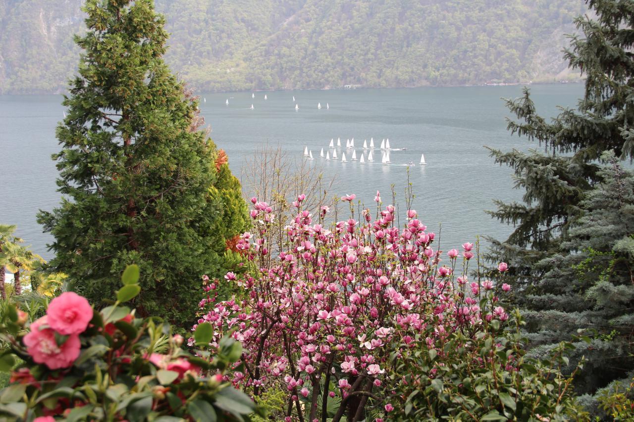 Ferienhaus Barony Luxus-Villa Castagnola-Seenähe, Park, Klimaanlage, Hallenbad (304907), Castagnola, Lago di Lugano (CH), Tessin, Schweiz, Bild 26