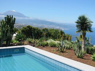 Ferienhaus Hidalgo Bungalow (309683), La Matanza de Acentejo, Teneriffa, Kanarische Inseln, Spanien, Bild 7