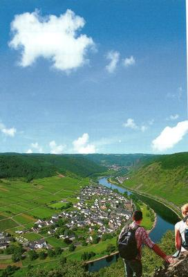 Ferienwohnung Jobelius (319430), Bruttig-Fankel, Mosel-Saar, Rheinland-Pfalz, Deutschland, Bild 20