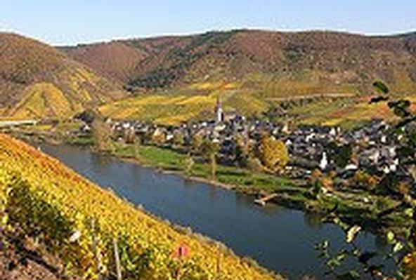 Ferienwohnung Jobelius (319430), Bruttig-Fankel, Mosel-Saar, Rheinland-Pfalz, Deutschland, Bild 22