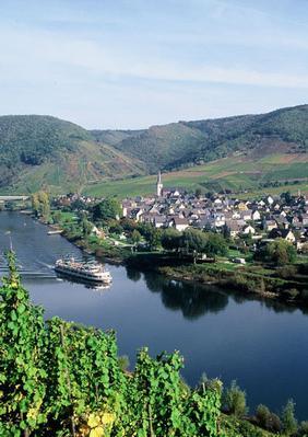 Ferienwohnung Jobelius (319430), Bruttig-Fankel, Mosel-Saar, Rheinland-Pfalz, Deutschland, Bild 21