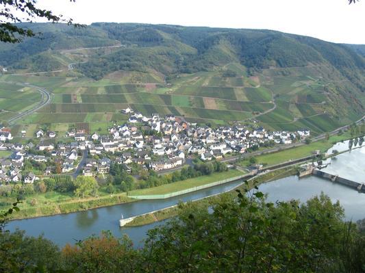 Ferienwohnung Jobelius (319430), Bruttig-Fankel, Mosel-Saar, Rheinland-Pfalz, Deutschland, Bild 8