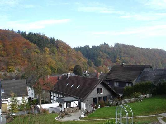 Ferienwohnung Wohnung 1: Komfort-Ferienwohnung in der Villa Fraxinus (322577), Hallenberg, Sauerland, Nordrhein-Westfalen, Deutschland, Bild 19
