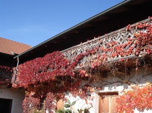 Ferienhaus Ferienhof Stein (325569), Kröning, Bayerisches Golf- und Thermenland, Bayern, Deutschland, Bild 13