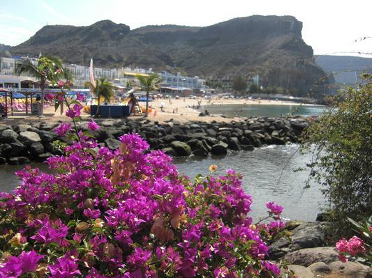 Ferienwohnung Monseñor (330203), Playa de Mogán, Gran Canaria, Kanarische Inseln, Spanien, Bild 24