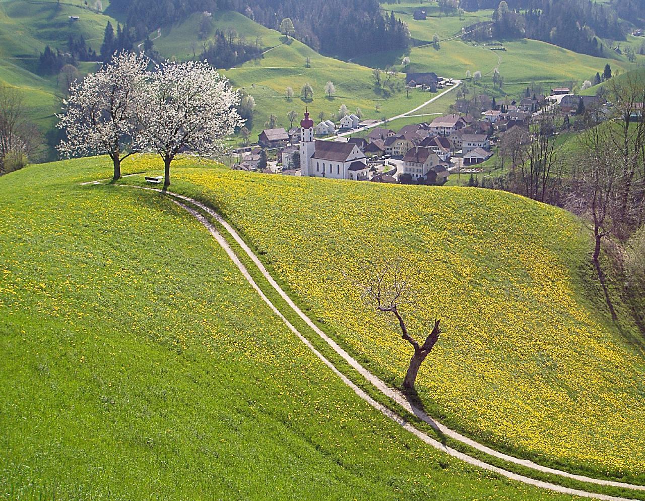 Ferienwohnung Napf-Chäsi (332635), Luthern, Willisau, Zentralschweiz, Schweiz, Bild 11