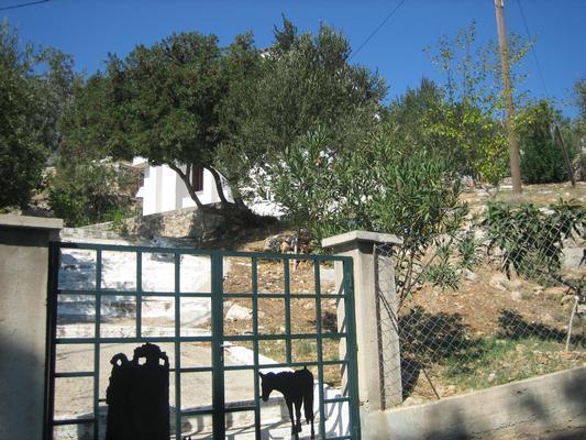 Holiday house Landhaus Popi (334252), Aj. Kirykos, Ikaria, Dodecanes Islands, Greece, picture 1