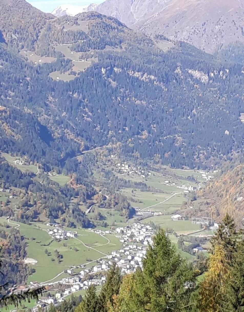 Appartement de vacances Alpe Monte Massella (334453), Poschiavo, Vallée de Poschiavo, Grisons, Suisse, image 33