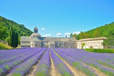 Holiday house St Roch Farmhaus: wunderschön renoviertes Landhaus aus dem 18. Jahrhundert im Herzen der P (335528), Robion, Vaucluse, Provence - Alps - Côte d'Azur, France, picture 32
