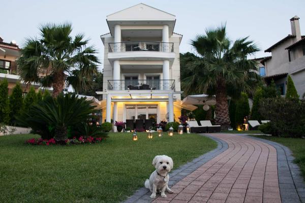 Ferienwohnung Sun Residence Exlusive Seaside Suiten in Polichrono Chalkidiki (336979), Polichrono, Chalkidiki, Makedonien, Griechenland, Bild 37