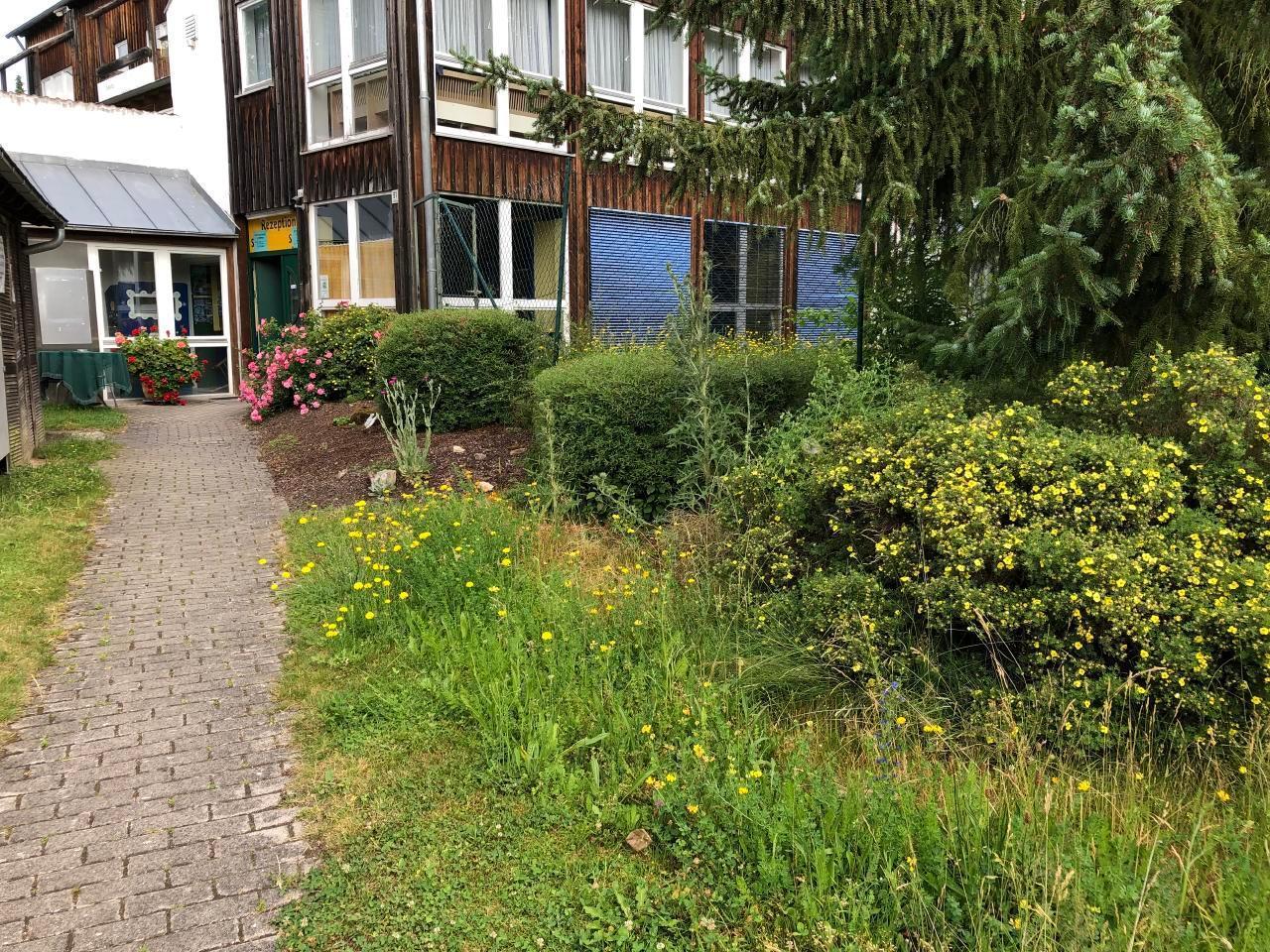 Ferienhaus am Kellerberg - mit  grossen Garten und herrlicher Aussicht, Kaminofen, Haustiere willkomm (337961), Zandt, Bayerischer Wald, Bayern, Deutschland, Bild 32