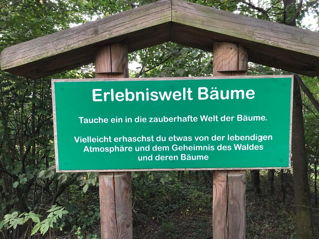 Ferienhaus am Kellerberg - mit  grossen Garten und herrlicher Aussicht, Kaminofen, Haustiere willkomm (337961), Zandt, Bayerischer Wald, Bayern, Deutschland, Bild 24