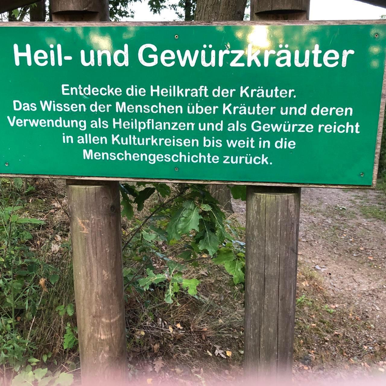 Ferienhaus am Kellerberg - mit  grossen Garten und herrlicher Aussicht, Kaminofen, Haustiere willkomm (337961), Zandt, Bayerischer Wald, Bayern, Deutschland, Bild 22