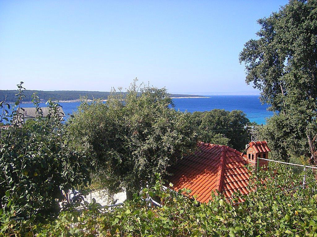 Ferienwohnung FeWo Boni Ljilana 2. (340142), Supetarska Draga, Insel Rab, Kvarner, Kroatien, Bild 7