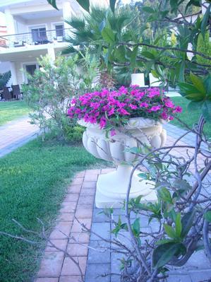 Holiday house 'Sun Residence' Luxusdomizil mit exlusiven Apartments in Polichrono/Chalkidiki Ruhe+Erholu (341850), Polichrono, Chalkidiki, Macedonia, Greece, picture 9