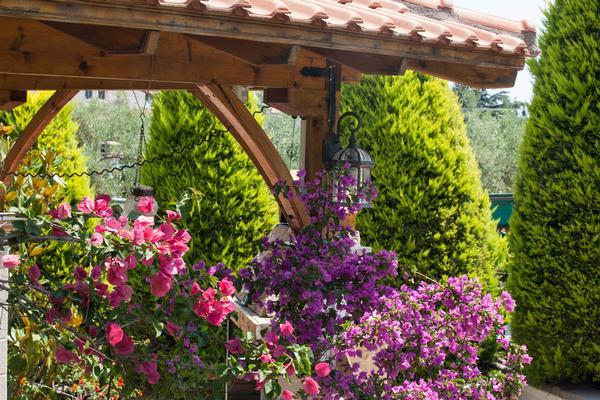 Holiday house 'Sun Residence' Luxusdomizil mit exlusiven Apartments in Polichrono/Chalkidiki Ruhe+Erholu (341850), Polichrono, Chalkidiki, Macedonia, Greece, picture 36