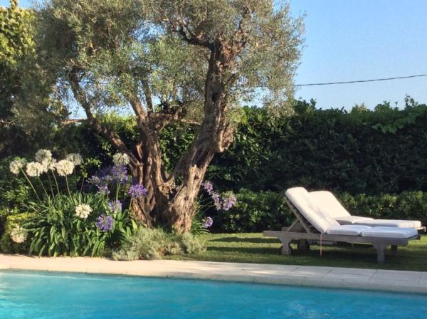 Holiday house Privatvilla Vence (344375), Vence, Alpes Maritimes, Provence - Alps - Côte d'Azur, France, picture 18