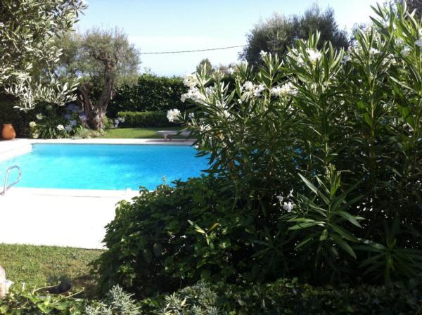 Holiday house Privatvilla Vence (344375), Vence, Alpes Maritimes, Provence - Alps - Côte d'Azur, France, picture 23