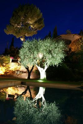 Holiday house Privatvilla Vence (344375), Vence, Alpes Maritimes, Provence - Alps - Côte d'Azur, France, picture 5