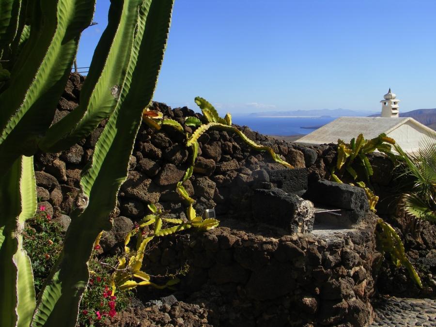Holiday house Finca Casa Niro (345269), La Asomada, Lanzarote, Canary Islands, Spain, picture 7