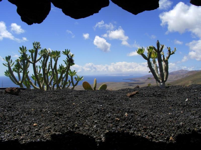 Holiday house Finca Casa Niro (345269), La Asomada, Lanzarote, Canary Islands, Spain, picture 18