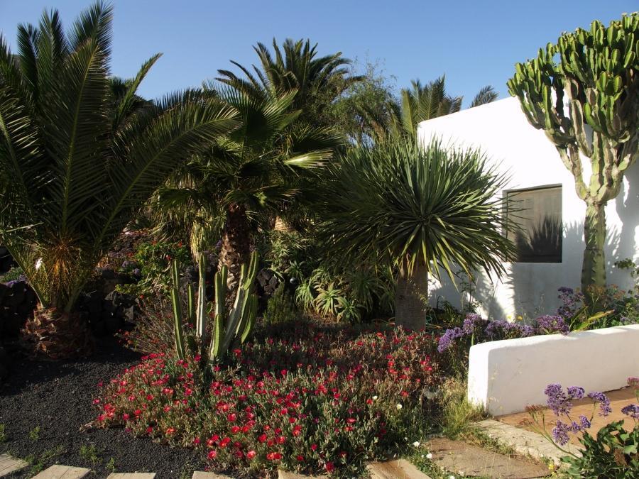Holiday apartment Finca Casa Roco I (345270), La Asomada, Lanzarote, Canary Islands, Spain, picture 23
