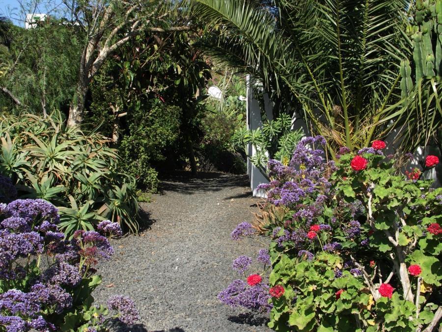 Holiday apartment Finca Casa Roco II (345271), La Asomada, Lanzarote, Canary Islands, Spain, picture 7
