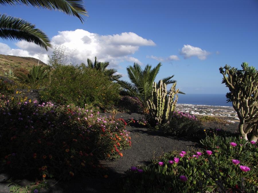 Holiday apartment Finca Casa Roco II (345271), La Asomada, Lanzarote, Canary Islands, Spain, picture 20