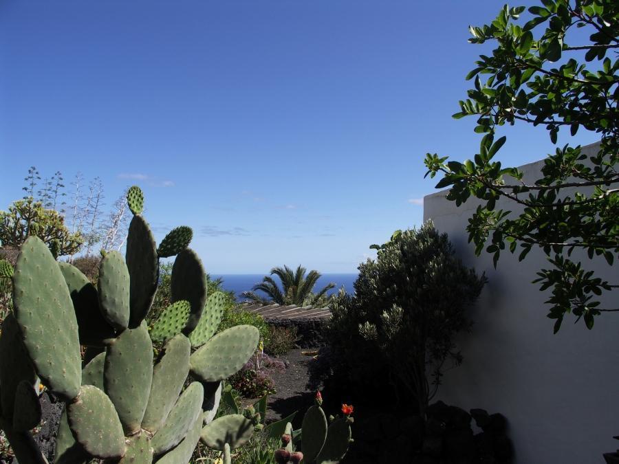 Holiday apartment Finca Casa Roco II (345271), La Asomada, Lanzarote, Canary Islands, Spain, picture 11