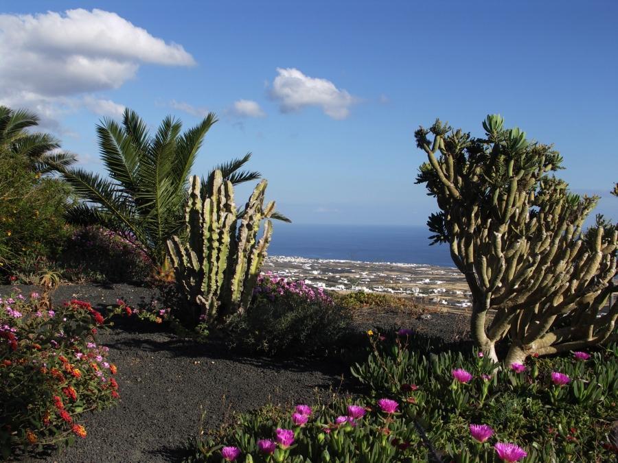 Holiday apartment Finca Casa Roco III (345272), La Asomada, Lanzarote, Canary Islands, Spain, picture 7