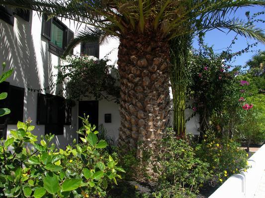 Holiday apartment Tropican (357310), Puerto del Carmen, Lanzarote, Canary Islands, Spain, picture 12