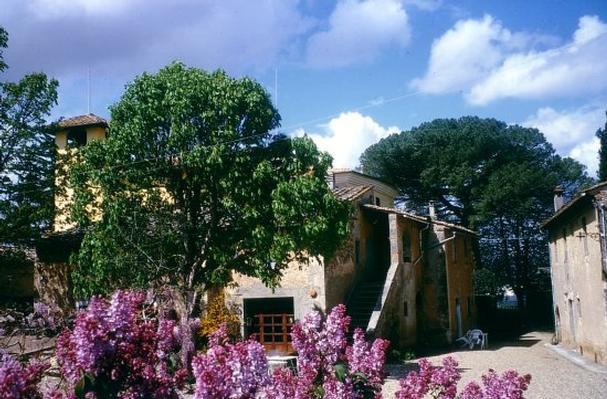 Ferienwohnung 805  Der echte Agritourismus (359251), Colle di Val d'Elsa, Florenz - Chianti - Mugello, Toskana, Italien, Bild 7