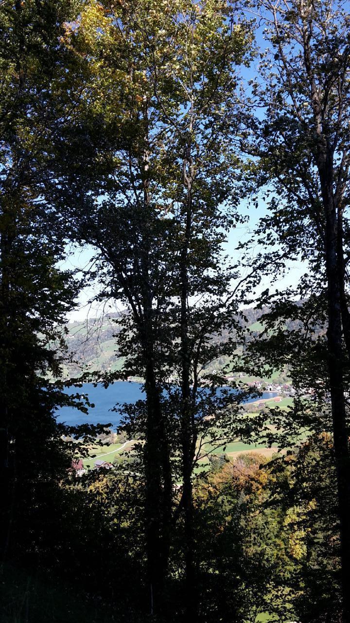 Holiday apartment Fruehalp (362383), Unterägeri, Lake Zug - Aegeri Valley, Central Switzerland, Switzerland, picture 18