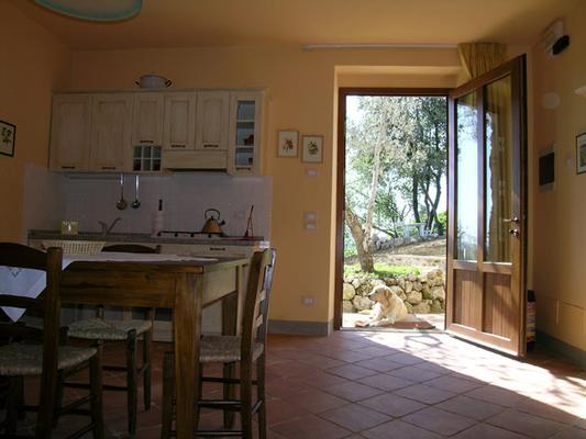 Ferienwohnung Freistehende Wohnung 1303 (363853), Casole d'Elsa, Florenz - Chianti - Mugello, Toskana, Italien, Bild 5