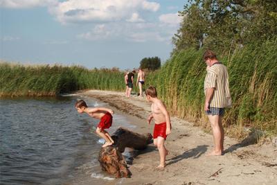 Ferienwohnung Ferienwohnanlage  Alte Molkerei Käserei 5 Sterne (364453), Rankwitz, Usedom, Mecklenburg-Vorpommern, Deutschland, Bild 12