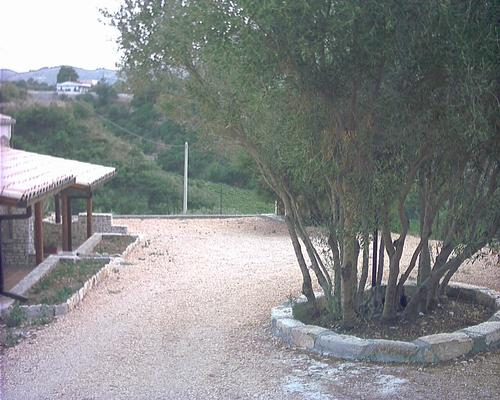 Holiday house RESIDENCE CIAULI - Agave (365020), Castellammare del Golfo, Trapani, Sicily, Italy, picture 4