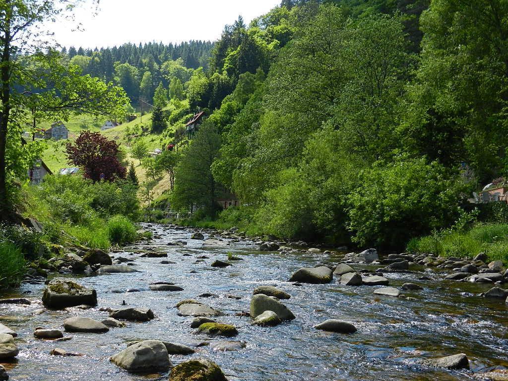 Ferienwohnung Schindel im Schwarzwald (376722), Baiersbronn, Schwarzwald, Baden-Württemberg, Deutschland, Bild 20