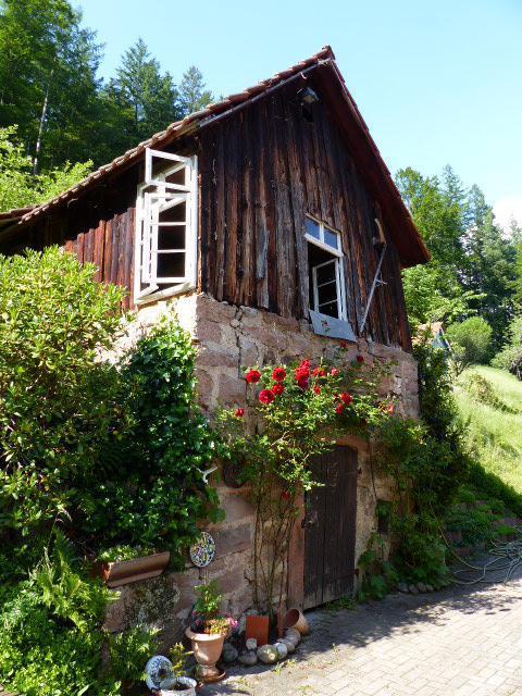 Ferienwohnung Schindel im Schwarzwald (376722), Baiersbronn, Schwarzwald, Baden-Württemberg, Deutschland, Bild 16