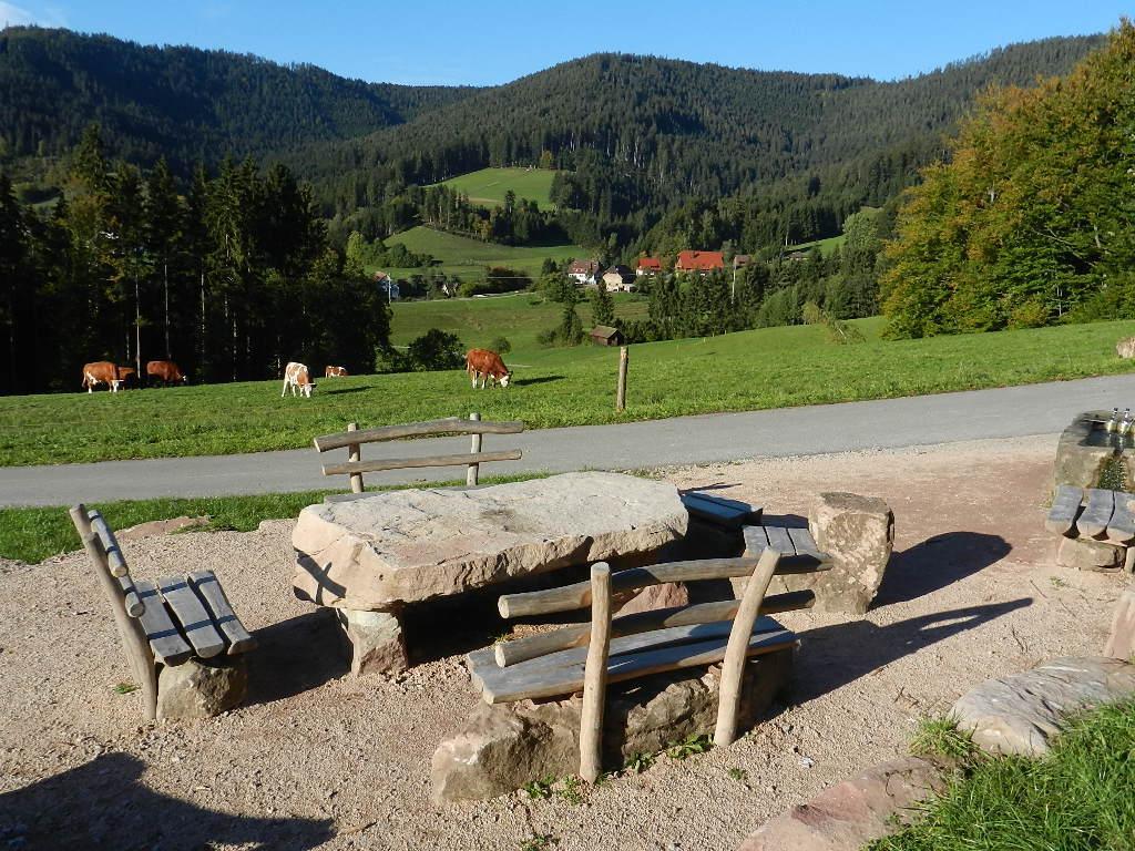 Ferienwohnung Schindel im Schwarzwald (376722), Baiersbronn, Schwarzwald, Baden-Württemberg, Deutschland, Bild 22