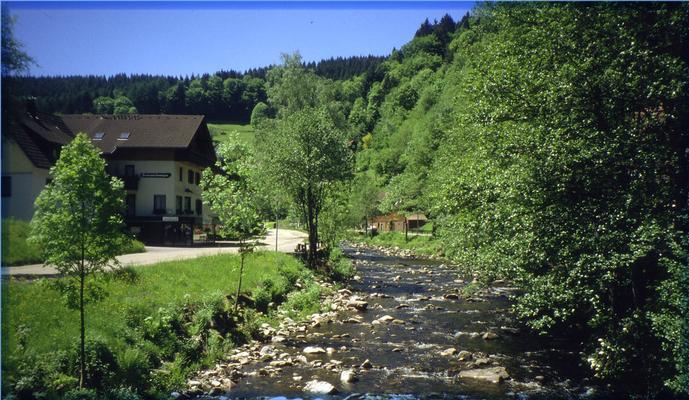 Ferienwohnung Schindel im Schwarzwald (376722), Baiersbronn, Schwarzwald, Baden-Württemberg, Deutschland, Bild 8