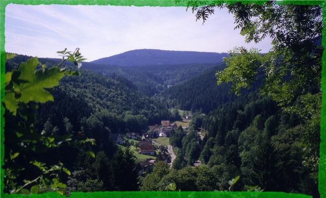 Ferienwohnung Schindel im Schwarzwald (376722), Baiersbronn, Schwarzwald, Baden-Württemberg, Deutschland, Bild 13