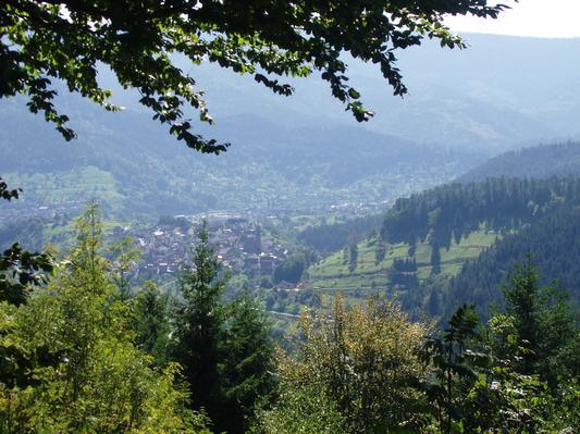 Ferienwohnung Schindel im Schwarzwald (376722), Baiersbronn, Schwarzwald, Baden-Württemberg, Deutschland, Bild 14