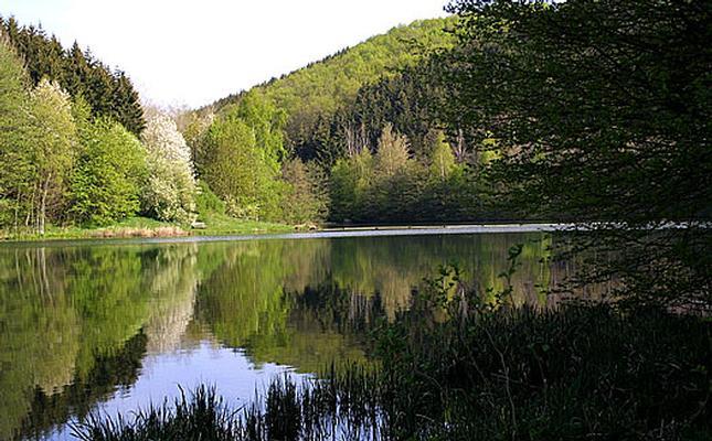 Ferienwohnung Maisonette-Whg. 2 geschossig FeWo1 (377380), Blankenheim, Eifel (Nordrhein Westfalen) - Nordeifel, Nordrhein-Westfalen, Deutschland, Bild 19