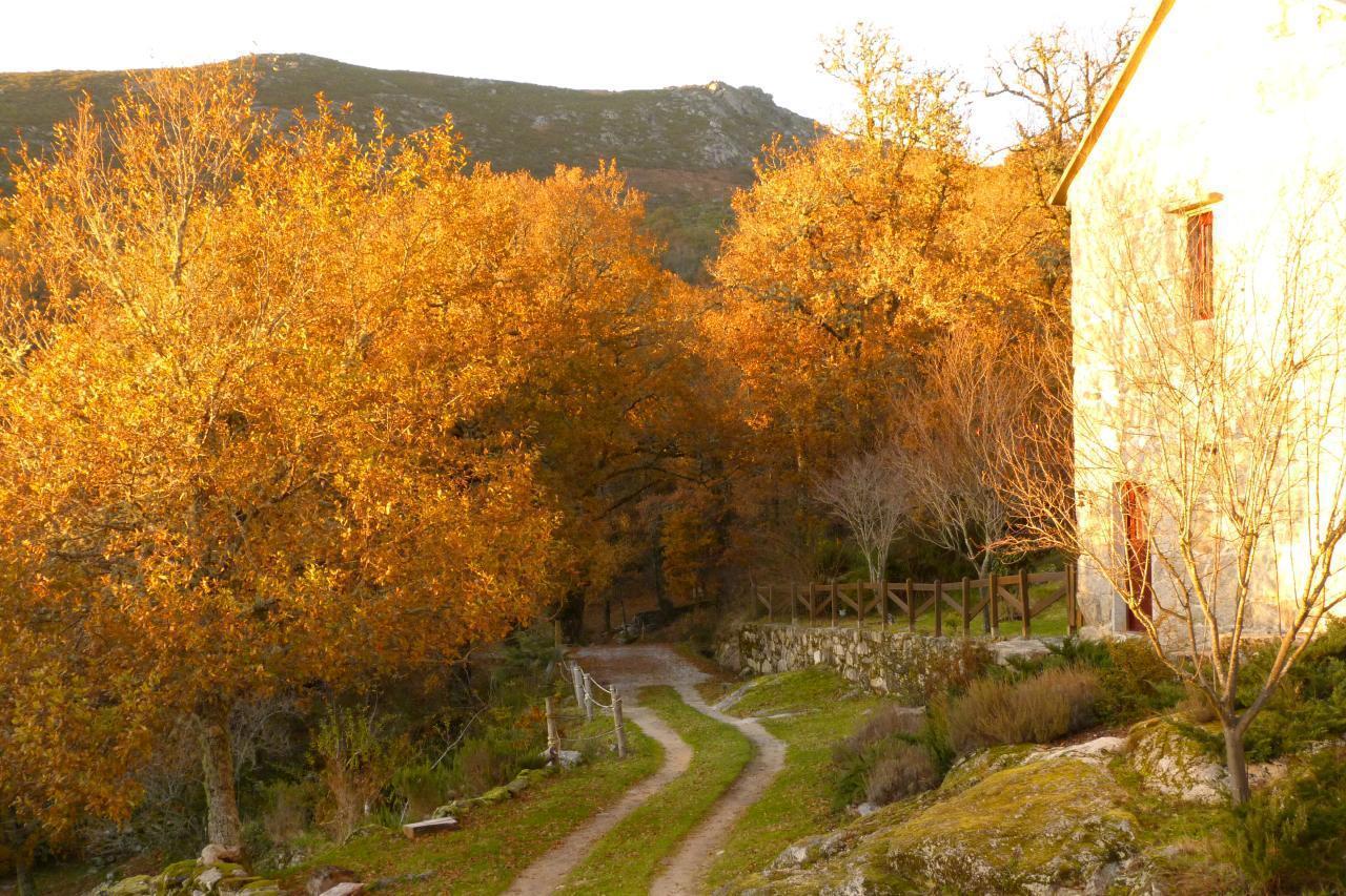 Ferienhaus Casa A Penalba (377383), Portomartiño, Pontevedra, Galicien, Spanien, Bild 18