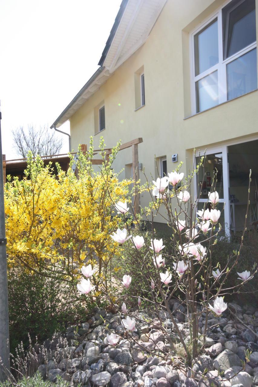 Ferienwohnung Black Pearl *** nur 400m zum Ostseesandstrand*** (381382), Koserow, Usedom, Mecklenburg-Vorpommern, Deutschland, Bild 15