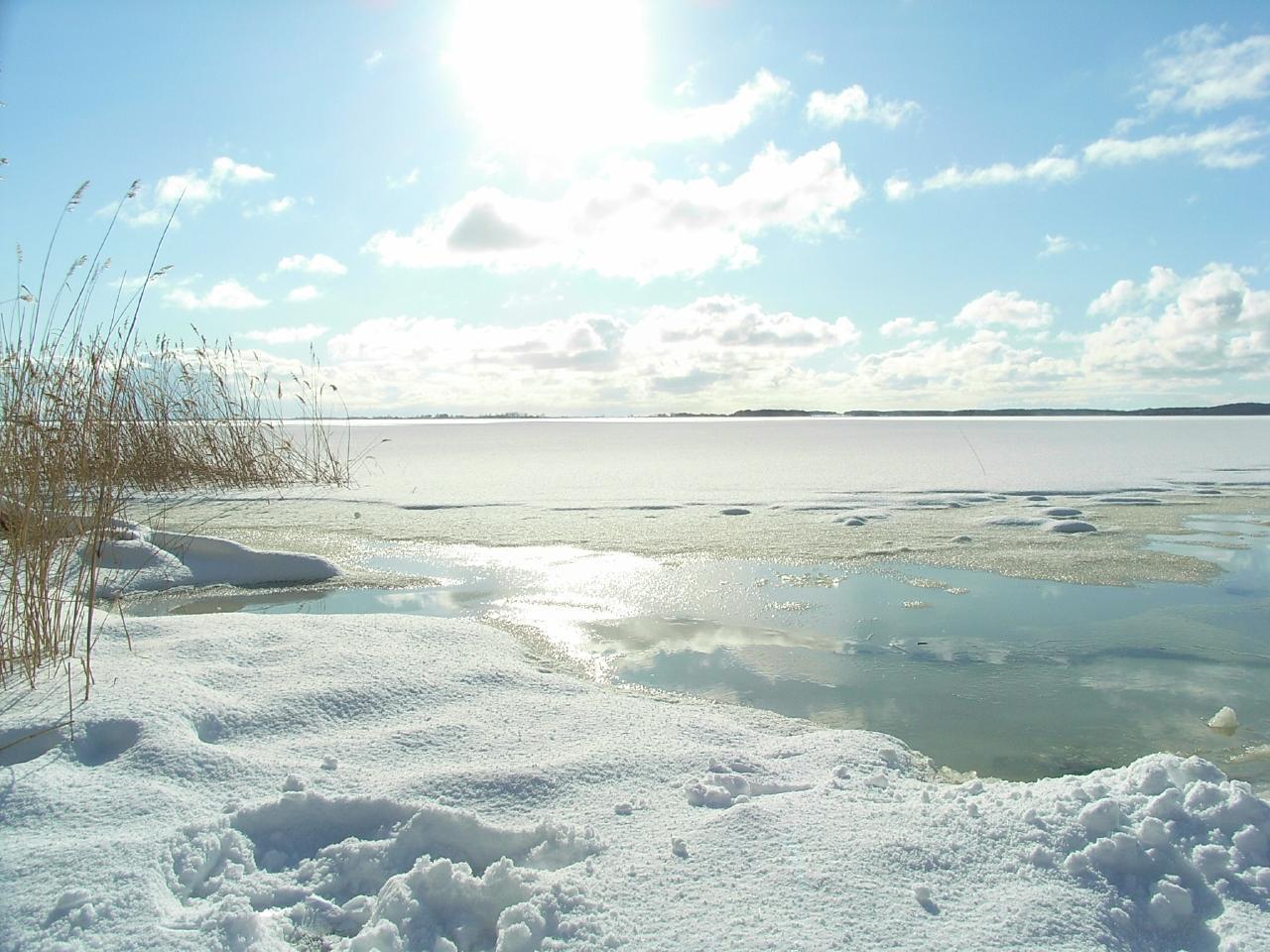 Ferienwohnung Black Pearl *** nur 400m zum Ostseesandstrand*** (381382), Koserow, Usedom, Mecklenburg-Vorpommern, Deutschland, Bild 26